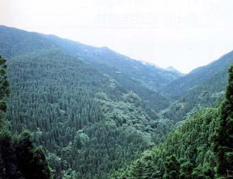 庭田水源の森
