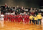 スポーツチャンバラ