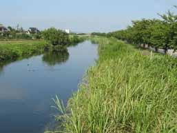 渡良瀬川沿岸