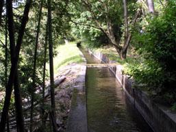 西光寺野疏水
