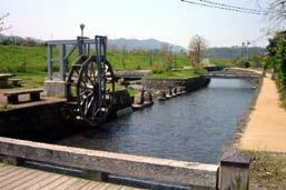 大井手川用水