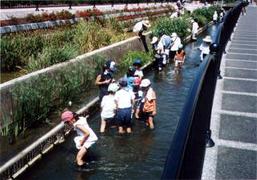 大和川分水