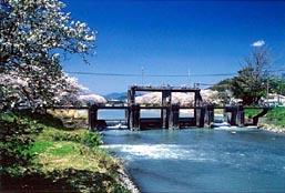 大井川用水
