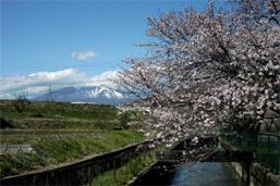 徳島堰疏水