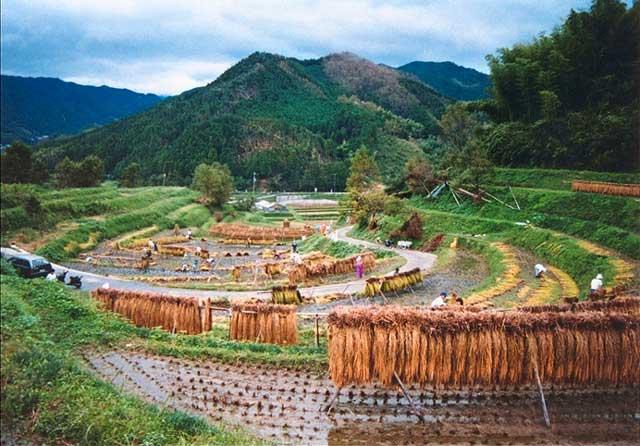 神奈備の里/稲渕