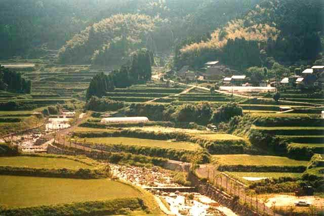 西の谷の棚田