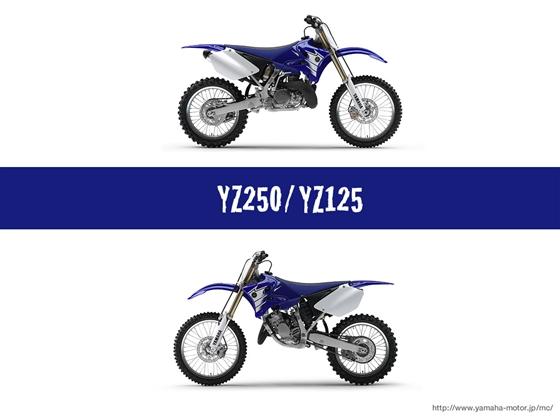 YZ250
